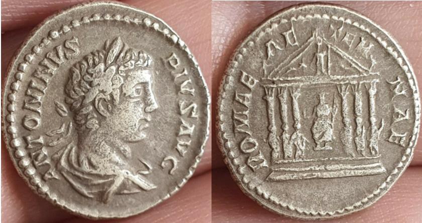 Ma collection de romaines - Page 17 Autre_15