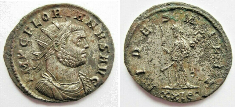 Ma collection de romaines - Page 13 Floria13