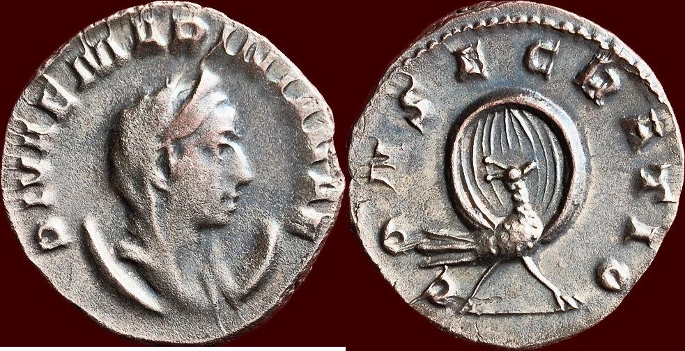 Ma collection de romaines Marini10