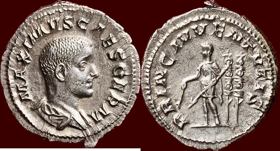 Ma collection de romaines Maximu10
