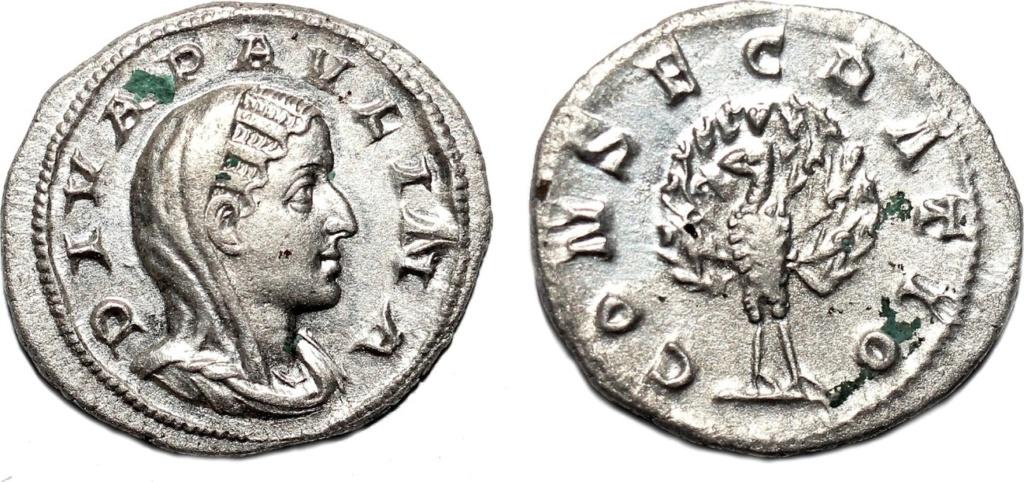 Ma collection de romaines Paulin10
