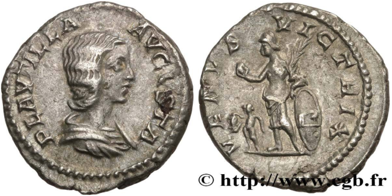Ma collection de romaines - Page 15 Plauti11