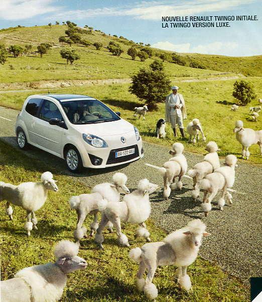 Moutons de luxe Pub_tw12