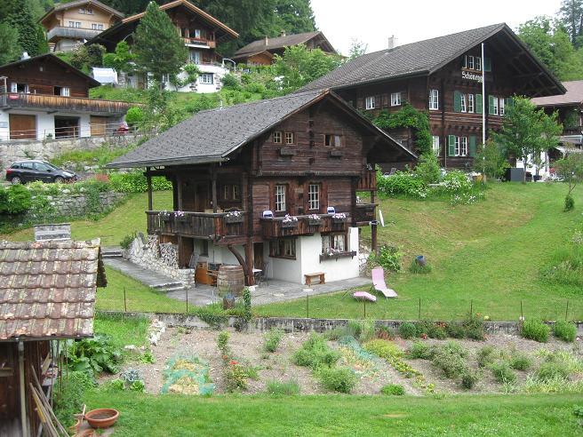 Cap de setmana a Suïssa Img_3915
