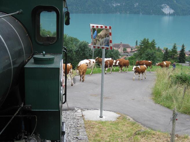 Cap de setmana a Suïssa Img_3935