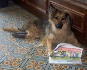 TCHARA apprend le français (15 septembre 2008) Journa10