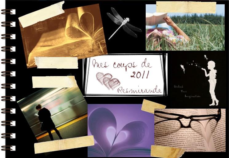 Les coups de coeur de Resmiranda - 2011 Scrapb15