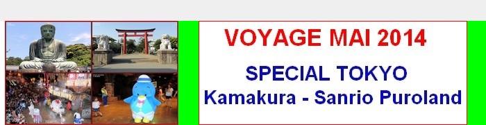 VOYAGE AU JAPON 2014-110