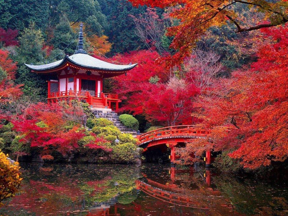 LE JAPON Photo_10