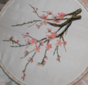Ma branche de cerisier Cerisi13