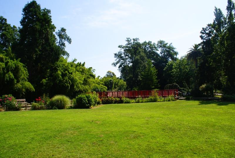 le jardin des plantes de Saint Cyprien Dsc06110