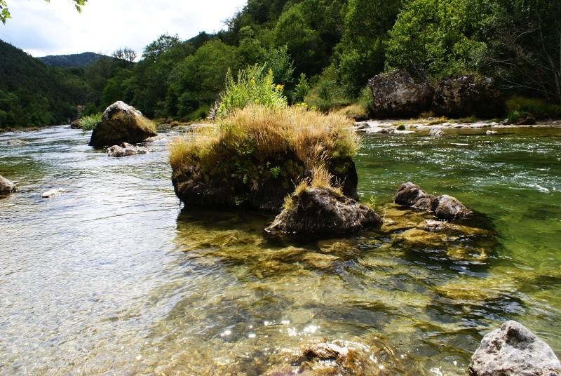 Les Gorges du Tarn Dsc06815