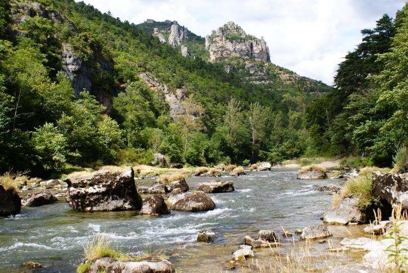 Les Gorges du Tarn Dsc06816