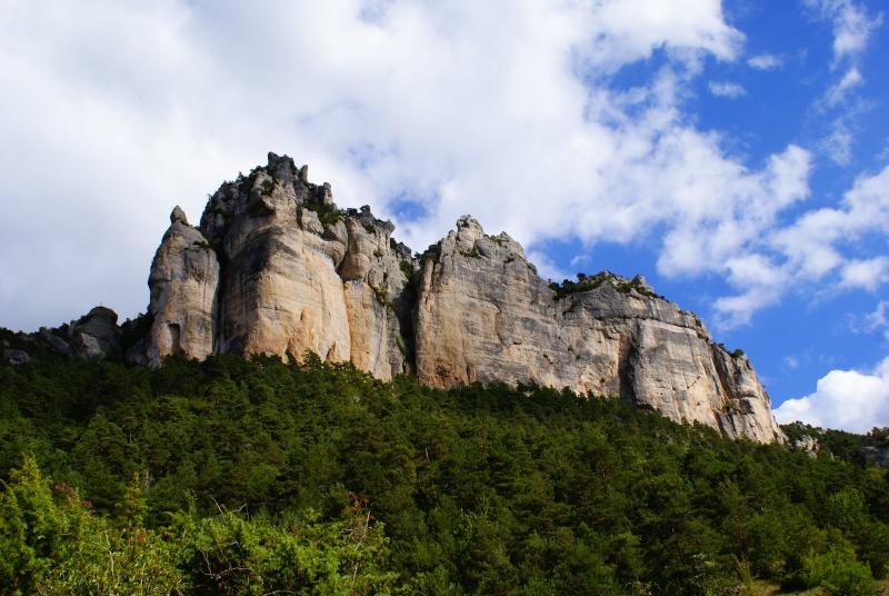Les Gorges du Tarn Dsc06817