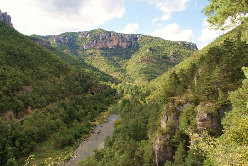 Les Gorges du Tarn Dsc06819