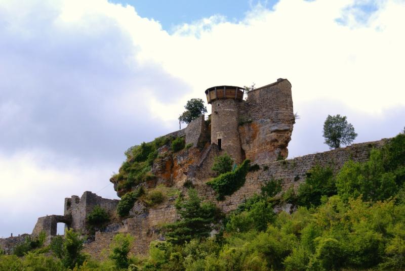 Les Gorges du Tarn Dsc06912