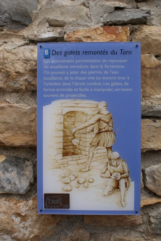 Les Gorges du Tarn Dsc06922