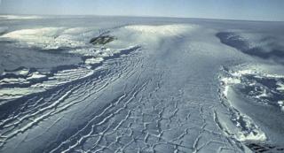Cette découverte improbable en Antarctique en dit long sur le climat qui y régnait 10397410
