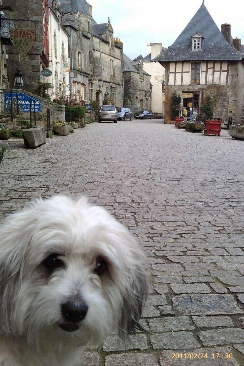 Rochefort en Terre Imag0010