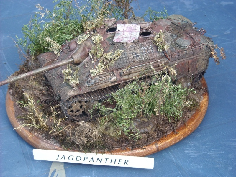 jagdpanther - Jagdpanther 1/35 dragon  Dscn1414