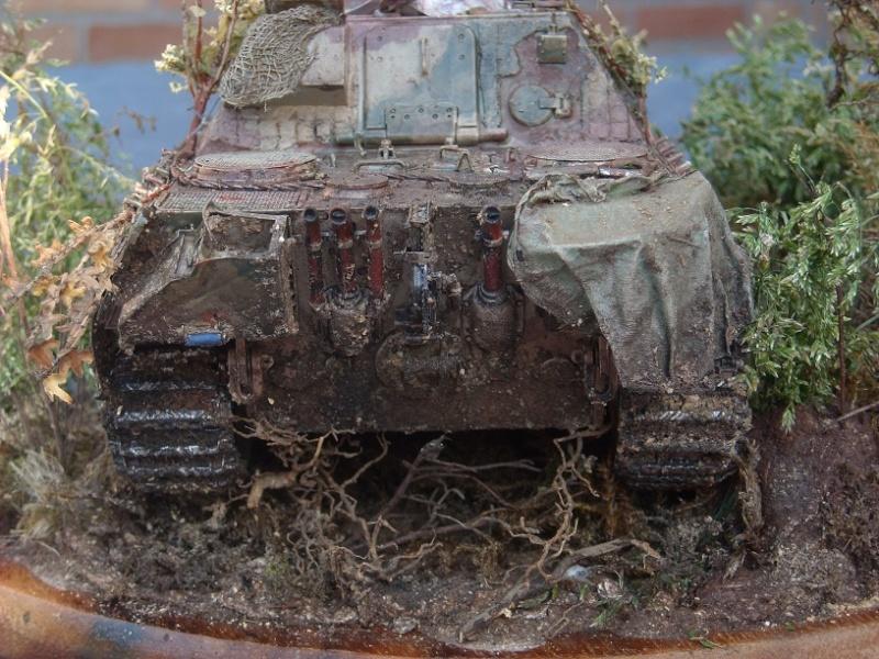 jagdpanther - Jagdpanther 1/35 dragon  Dscn1423