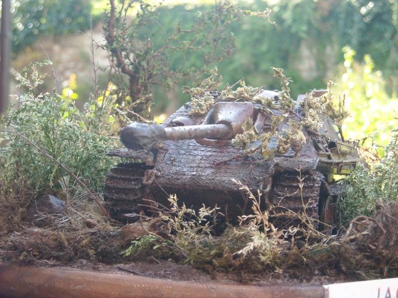 jagdpanther - Jagdpanther 1/35 dragon  Dscn1426