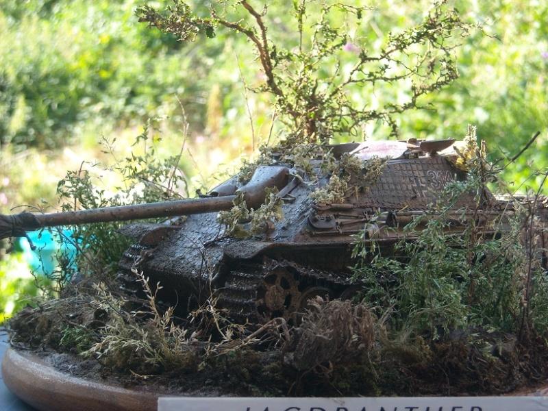 jagdpanther - Jagdpanther 1/35 dragon  Dscn1510