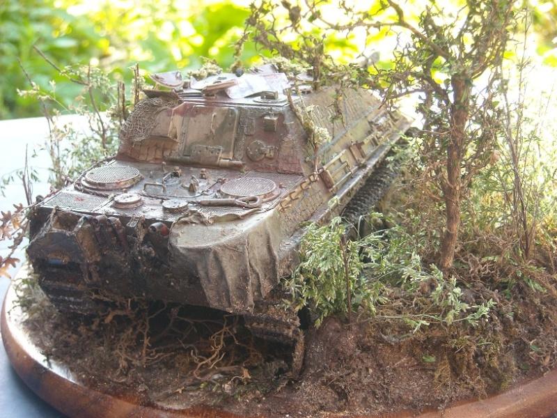 jagdpanther - Jagdpanther 1/35 dragon  Dscn1511