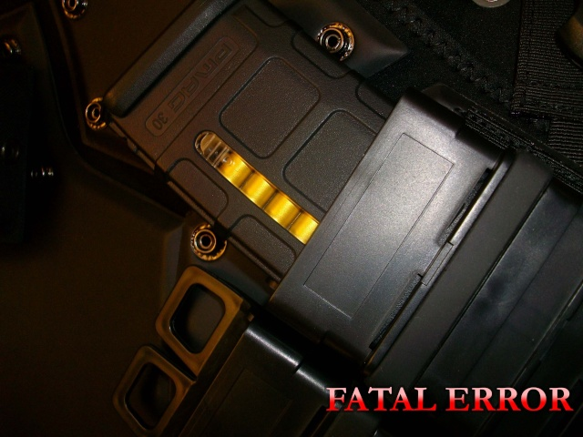 OP - FATAL ERROR  Imgp5668
