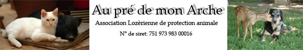 Dpt 48 - Naya - Chatte Stérilisée rousse - Née en mai 2012. Sans_t13