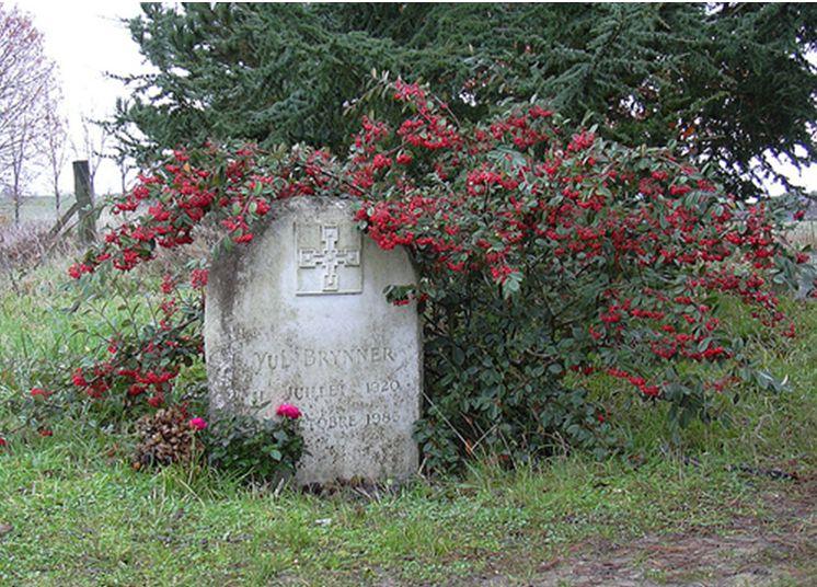 Tombes de personnes célèbres  Captu256