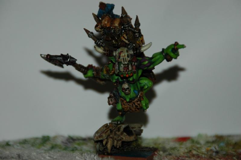 [WHB/O&G] Chef de Guerre Orque Sauvage Dsc_2112