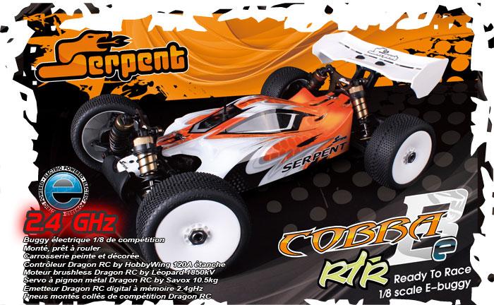 Les buggy 1/8 electrique Ser60010