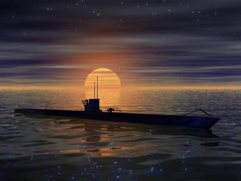 le dolph'ijn....... Onderz10