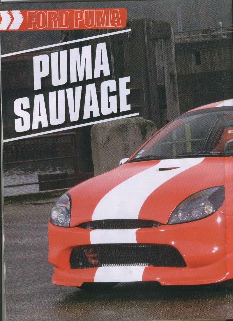 FORD PUMA DE LESKA DANS 16S MAG Puma_l13
