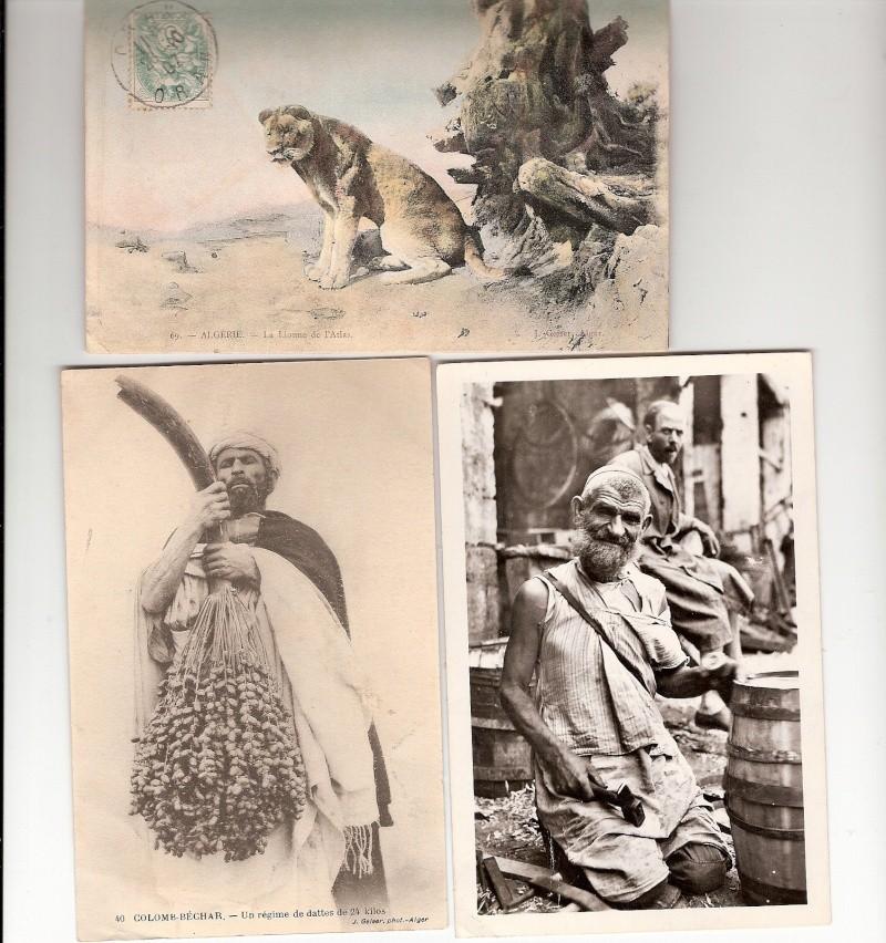 cartes postales d'algerie - Page 7 Scanne62