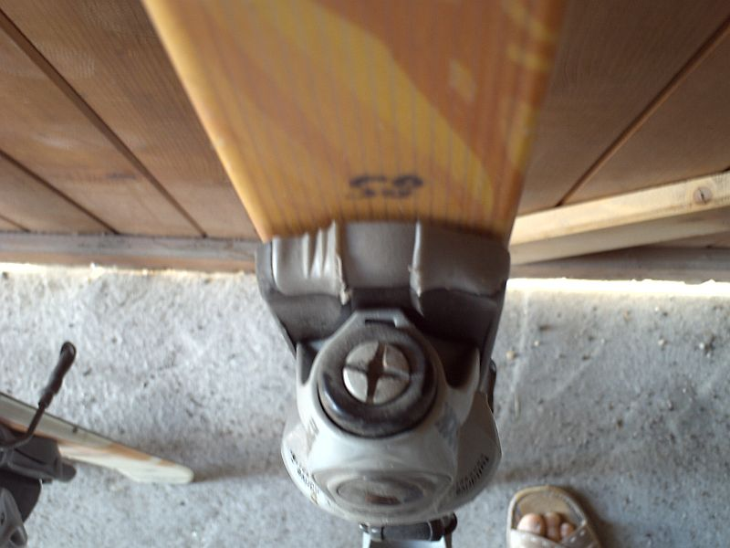 skis Dynastar + chaussures Img_0730