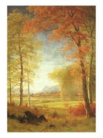Imágenes Autumn10