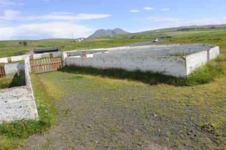 Islandais Beton_11
