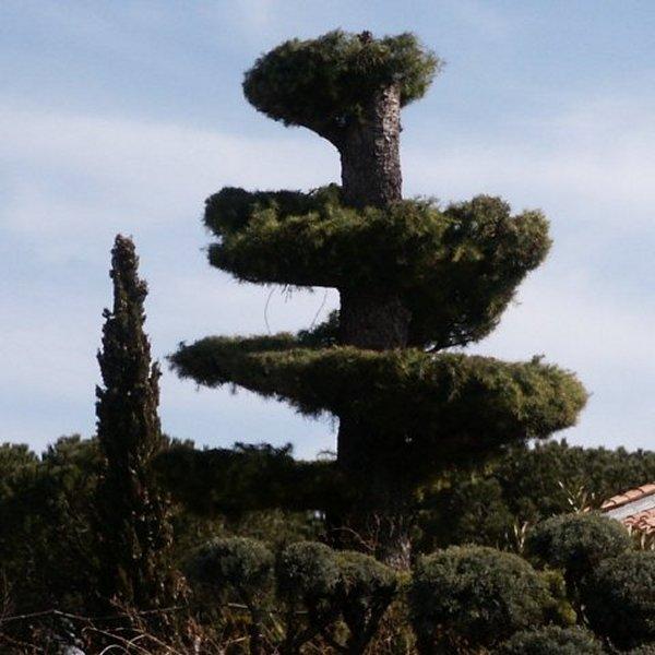 Les jardins Jardin10