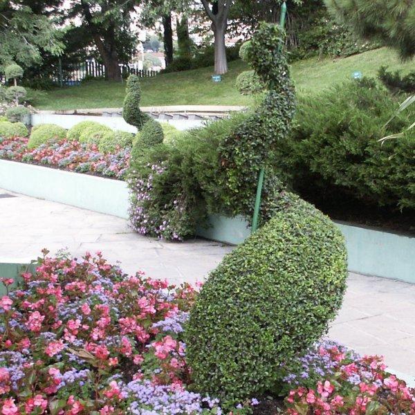 Les jardins Jardin11