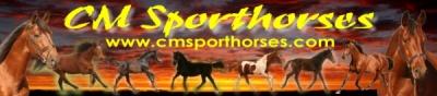 CM Sporthorses Forum www.cmsporthorses.com