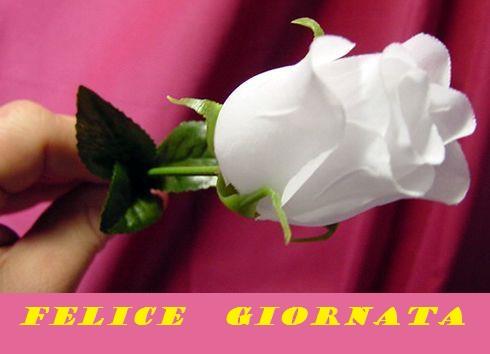Buongiorno a tutti - Pagina 37 Gigigi21