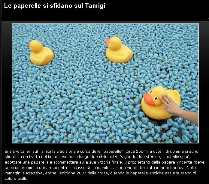 Paperelle....................... Papere10