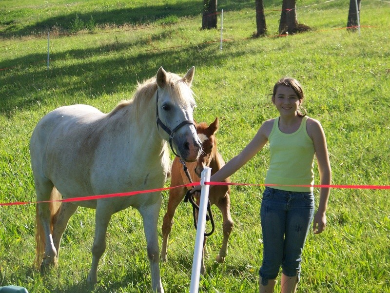 NINA - ONC selle typée Camargue née en 2002, et sa fille ALOE (2010) - adoptées en août 2010 par nine68 - Page 8 01911