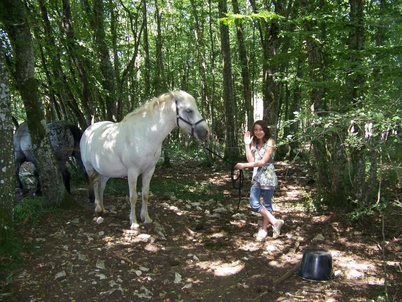 NINA - ONC selle typée Camargue née en 2002, et sa fille ALOE (2010) - adoptées en août 2010 par nine68 - Page 5 02110