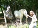 NINA - ONC selle typée Camargue née en 2002, et sa fille ALOE (2010) - adoptées en août 2010 par nine68 - Page 5 01510