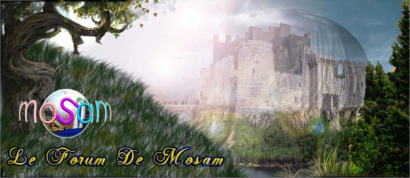 LE CLUB DE MOSAM