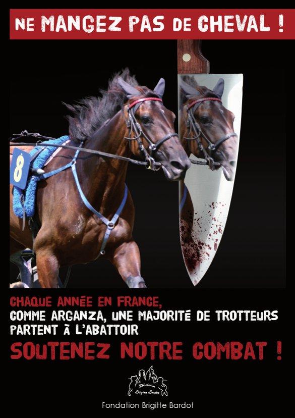 """""""Un cheval ça ne se mange pas"""" Tract310"""