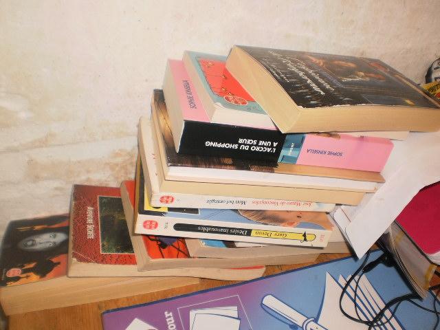 Photos - Et si on se montrait nos bibliothèques ? P9190015